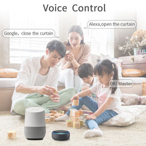 roller shade motor control by alexa and google home