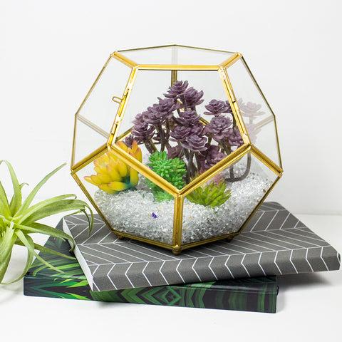 Brass Geometric Terrarium with Lid