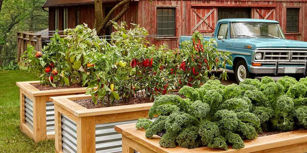 Backyard Flower Bed Idea