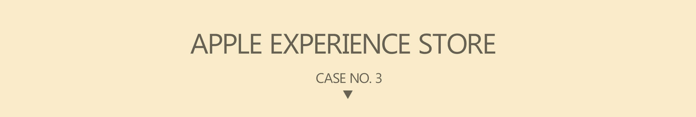Apple Experience Store Case Three